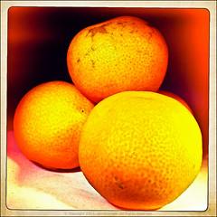 222/365 - Orange (*ian*) Tags: food orange macro oneaday closeup fruit square lomo dof stack pile favourite iphone day222 project365 bigemrg photo365 hipstamatic inas1969film 3652011 chunkylens 3652011aug