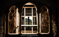 Window of Opportunity (Rainbows Inspire) Tags: blackandwhite opportunity cloud abstract black blur flower colour window nature field photomanipulation photoshop landscape photography design photo cool render stock fantasy psd effect technique depth lanscape windowofopportunity