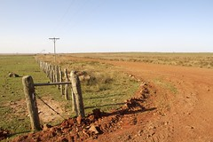red road (micmol ) Tags: road red green nature argentina horizontal fence landscape outdoors landscapes countryside day outdoor horizon scenic soil dirt corrientes division solitary lightpole desolation sunnyday separation flatland privateproperty reddish wodden cloudlesssky redflat