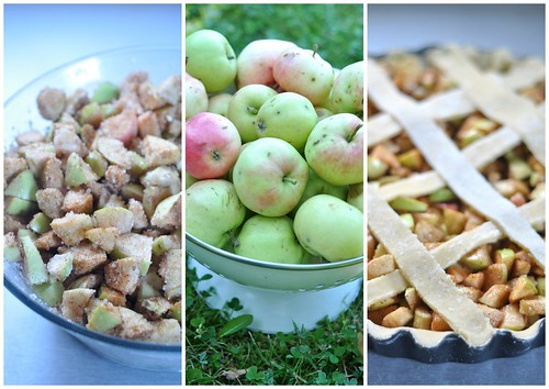 apple pie (making)