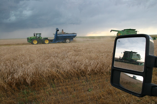 I got all four combines in view.