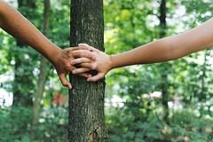 159/365. (kelley f) Tags: tree love film boyfriend grass leaves happy hands focus girlfriend couple arms