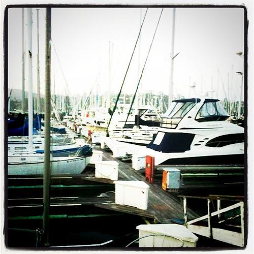 1106-SF&Monterey-2378