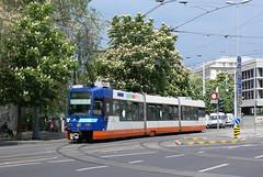 2008-05-11, Genève, Rond-Point de Plainpalais (Fototak) Tags: switzerland geneva tram railway genève tramway tpg dav strassenbahn vevey 836 ligne13