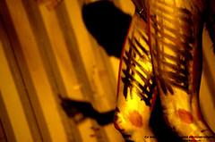 Borderline Biennale 2011 - Japan Apocalypse, Johanna Constantine acting performance IMGP3702 (Abode of Chaos) Tags: portrait streetart france art mystery museum painting rawart outsiderart chaos symbol goin contemporaryart secret 911 explosion taz eros container event vision freemasonry emergence hallucination ddc sanctuary mystic spectre apparition cyberpunk landart manifestation pmd alchemy modernsculpture prophecy 999 endoftheworld epiphany éclosion curator psychosis dadaisme theophany materiaprima épiphanie nutriscoetextinguo salamanderspirit organmuseum saintromainaumontdor demeureduchaos thierryehrmann lukaszpira abodeofchaos facteurcheval palaisideal kurtehrmann onirisme postapocalyptique maisondartiste artistshouses actingperformance johannaconstantine borderlinebiennale blackswantheory satomizpira lespritdelasalamandre danielromani noprogramnopressnomoney survivetheapocalypse servergroup bodyhacktivism lakonik cocokatsura kiyotakatsurisaki