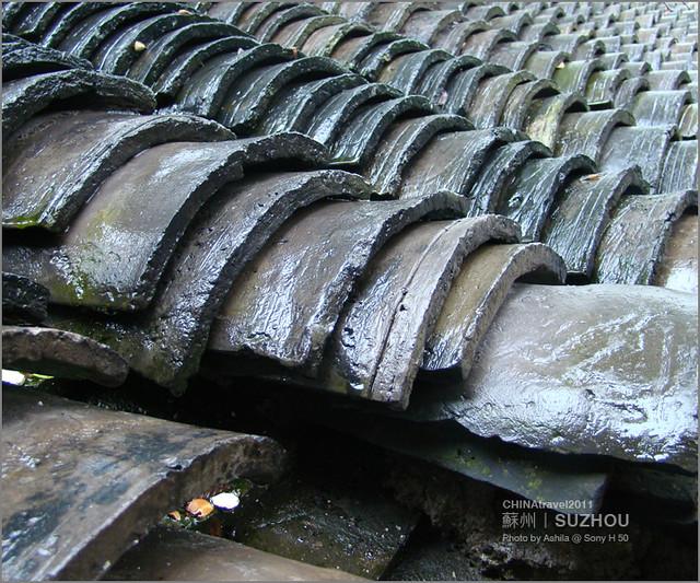 CHINA2011_341