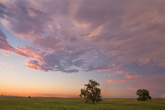 The Sky Above (David M. Cobb) Tags: trees sunset sky usa color grass southdakota still midwest sd arbor grasses prairie oaks badlandsnationalpark