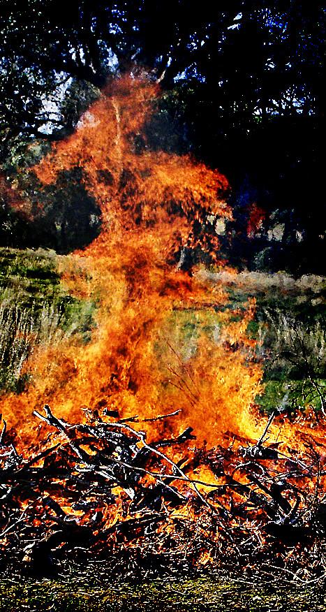 Fiery dervish
