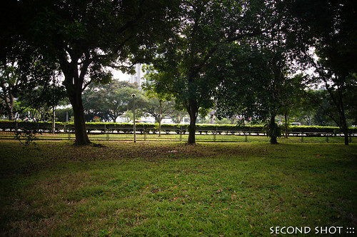 Old North Buona Vista Rd and Ayer Rajah Expressway