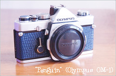 Olympus OM-1 restoration (AFTER) (nighstar) Tags: blue slr film 35mm vintage skin olympus om1 leatherette reseal reskin akiasahi lightseals