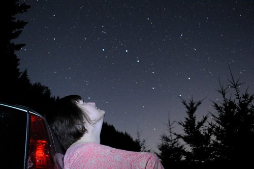 Robin and Stars
