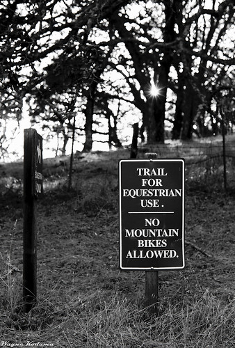 No Mountain Bikes Allowed
