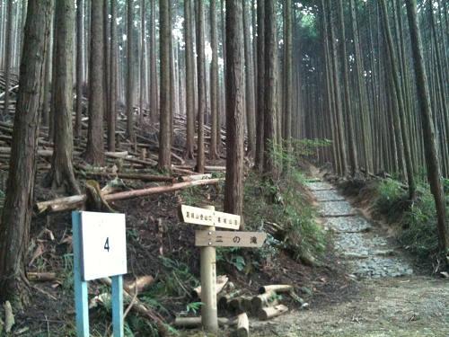 快適なのんびり登山コース『大和葛城山』@御所市