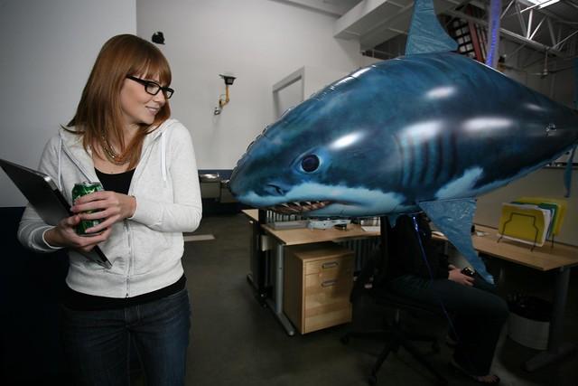 Talia v. Shark
