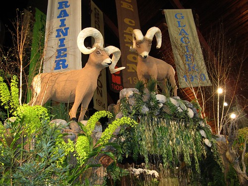 Rams in National parks show