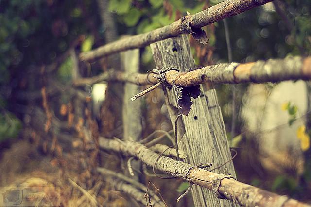 Fence en La Bouza