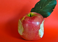 Mac usato in vendita - Used Mac for sale. (neera*) Tags: apple mac stevejobs mela