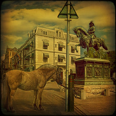 Den Haag... Willem and 2 horses. (egold.) Tags: holland netherlands statue denhaag hague textures hdr williamoforange idream nordeinde magicunicornverybest magicunicornmasterpiece sbfmasterpiece truthandillusion sbfgrandmaster