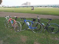 edogawa cycling