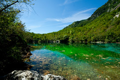 IMG_8333 (Zuc!) Tags: mountain lake lago reflex friuli riflesso riserva cornino