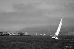 Sailing Towards Golden Gate Bridge (earl.angus) Tags: california bridge blackandwhite fog sailboat golden boat gate sailing foggy goldengatebridge sanfranciscobayarea sail earlangus
