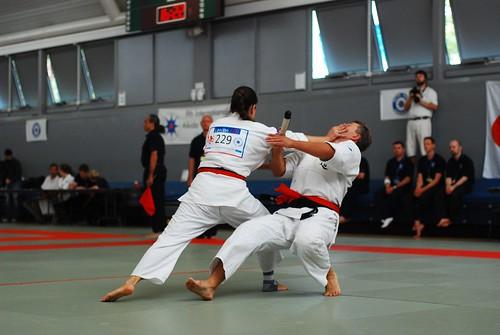 6050818432 b1bb49c8c2 9th International Aikido Tournament