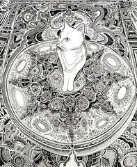 white cat drawing (my name is O.) Tags: cute art cat penandink micron cutekitty sittingcat catdrawing
