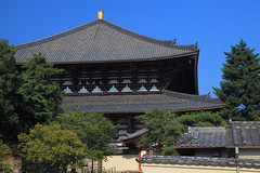 Golden SIBI on the temple's roof (phtg_knsei) Tags: blue sky japan temple gold nara todaiji 東大寺 sibi 鴟尾 しび 5dmarkⅱ