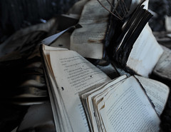 like leaves in autumn (OHCPHOTOGRAPHY) Tags: old writing fire god pages ominous shed books burnt char rare destroyed burned singed