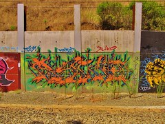 Ryno (YUNGVINCE) Tags: california ca railroad graffiti bay tag rail tags east eastbay ryno kts rsn gl oms skan