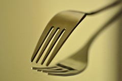 Fork (Third Place ' reflections contest' august 2011 (Lisa Karloo) Tags: macro reflection kitchen silverware object fork wow1 2011 digitalcameraclub project365 mygearandme 2011inphotos flickrstruereflection1