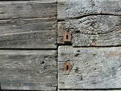 P1000221 (gzammarchi) Tags: italia natura porta montagna paesaggio monocrome dettaglio camminata itinerario moraduccio firenzuolafi