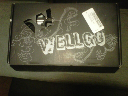 wellgo pedal review