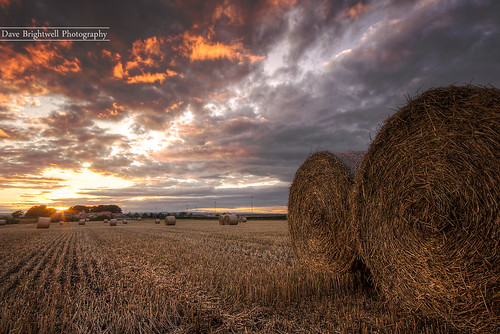 Bales by jimmypop68