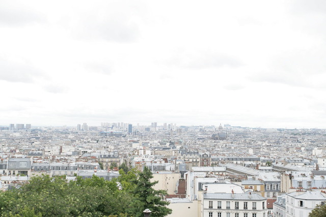 parisian skyline