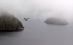 Misty Fjords, Alaska (blmiers2) Tags: travel sea white mist nature misty fog alaska photography nikon seaplane fjords floatplane 2011 mistyfjords d3100 blm18 blmiers2