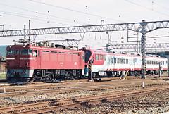 ED75151+アルカディア配給 (OOMYV) Tags: ed75 jnr electric locomotive engine loco jrf freight jre east japanese rail blue red train