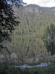 Conifers reflection (Jrk3) Tags: dorothylake alpinelakeswilderness wahiking