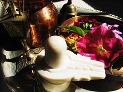 A Place of Worship (~ladanseuse) Tags: flowers garden shiva puja shivalinga