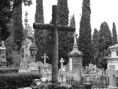 P1000202 (josemiguel_80) Tags: de san cementerio isidro