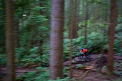 Gravity = speed! (ADove1) Tags: trees blur vancouver mountainbike trails burnaby rockymountain panning vignette adera