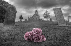 Grave times (www.chrislovephotography.co.uk) Tags: nottingham pink flowers blackandwhite colour grave graveyard mono chapel graves churchyard kimberley hdr selective