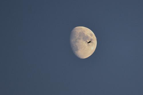 Moon Landing DSC_0238