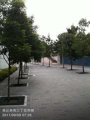 朝散歩(2011/9/9 7:30-7:45)