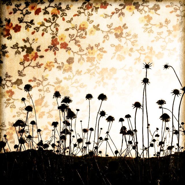 Vintage floral overlay