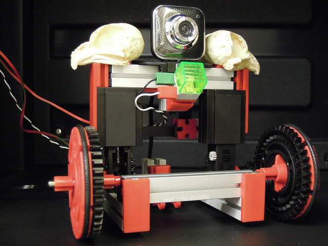Roboticus Familiaris