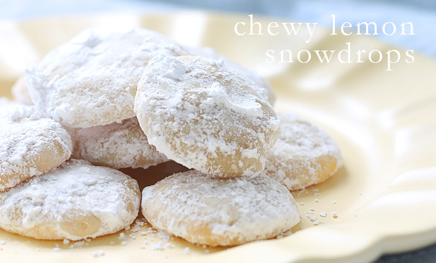 chewy-lemon-snowdrops-tx