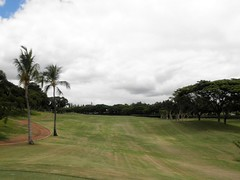 WAIKELE COUNTRY CLUB 203b