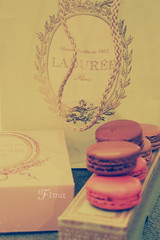 Laduree .. (Fim  Senior 2012 !) Tags: colours laduree