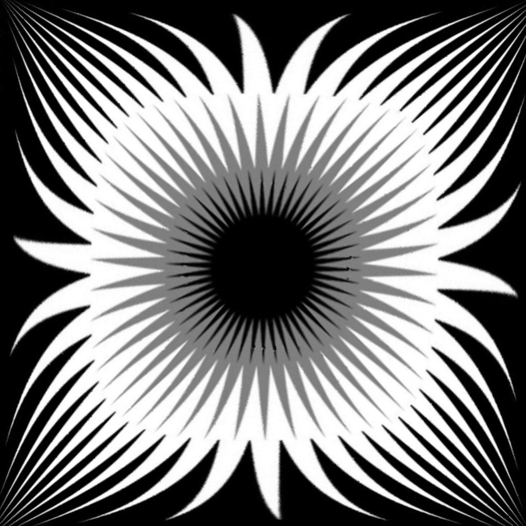 Black Flower 21st Century Op Art Set